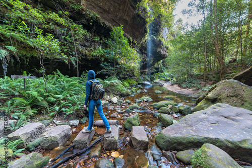 Fototapeta Woman hiking in wilderness of rainforest