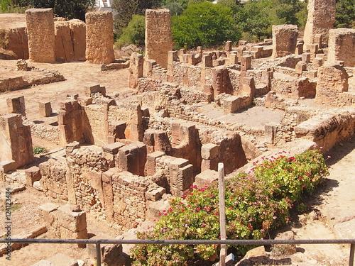 Fotografie, Obraz  Руины древнего Карфагена