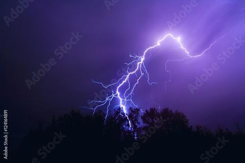 Lightning Bolt Over Trees