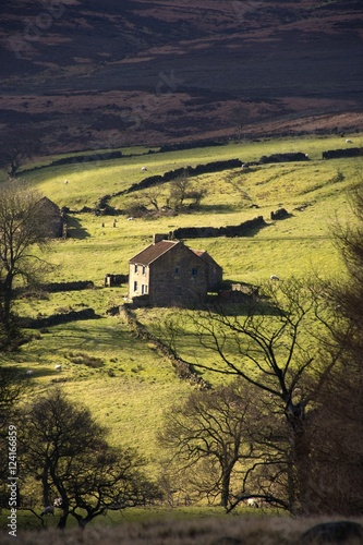 dom-w-wsi-north-york-moors-north-yorkshire-anglia