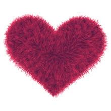 Valentine Fur Pink Heart On Wh...