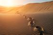 canvas print picture - desert