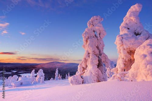 Sunset over frozen trees on a mountain, Levi, Finnish Lapland Tableau sur Toile