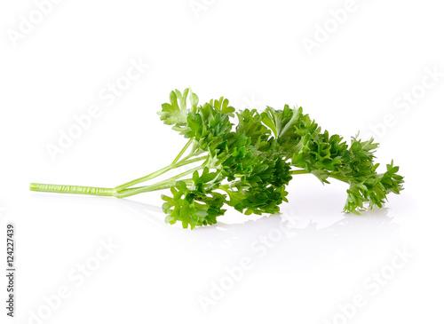 Photo  parsley isolated on white