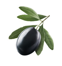 Black Single Olive 1 With Leaves Isolated On White Background