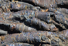 Close Up Of Volcanic Tubes And Blue Lava;Idaho United States Of America