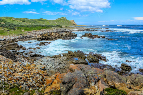 Foto op Canvas Zuid Afrika Landscape of Cape of Good Hope Natural Reserve in Cape Peninsula National Park, South Africa. The Cape of Good Hope is a section of Table Mountain National Park.
