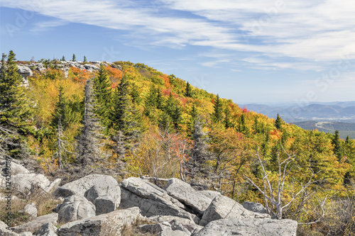 Photo  Autumn on the Allegheny Front at Bear Rocks, Dolly Sods Wilderness, West Virgini