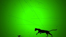 Cat Chase Mouth In Retro Old L...