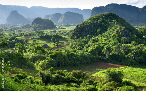 Photo  landscape of valley of Vinales,Cuba