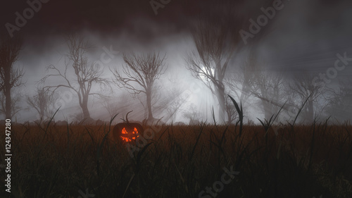 Poster Marron chocolat Halloween pumpkin in misty field at moonlight.