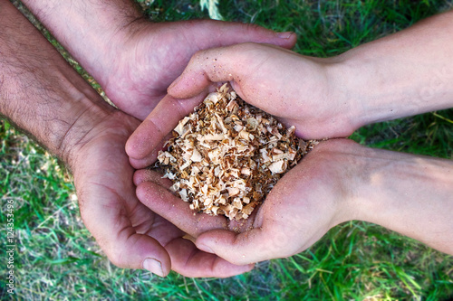 Fotografie, Obraz  Young hands passing the sawdust to old hands