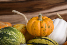 Group Of Small Decorative Pumpkins On Wood