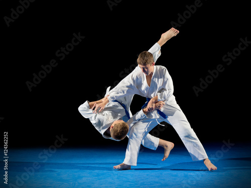 Garden Poster Martial arts Boys martial arts fighters