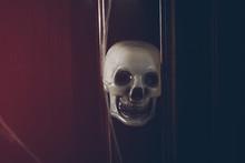 Skull Mask Looking At You.