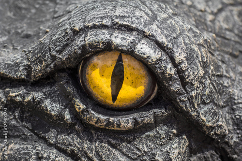 Fotobehang Krokodil Yellow eyes of crocodiles.