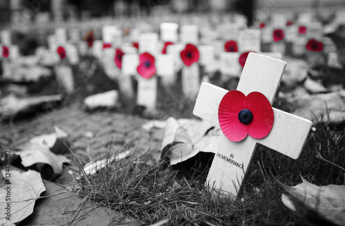 Remembrance day display in Westminster Abbey Canvas Print