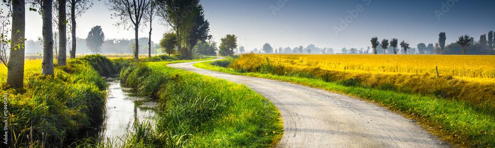 Fototapeta paesaggio rurale in campagna