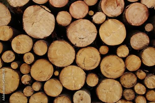 Türaufkleber Holz Pile of wood logs