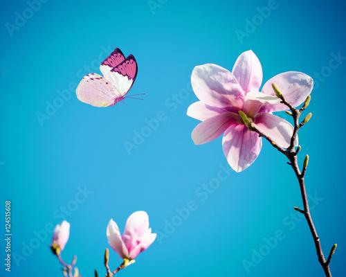 rozowy-motyl-z-rozowymi-kwiatami-na-tle-nieba