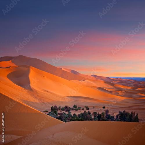 Poster Maroc Oasis over sand dunes in Sahara desert in Morocco, Africa