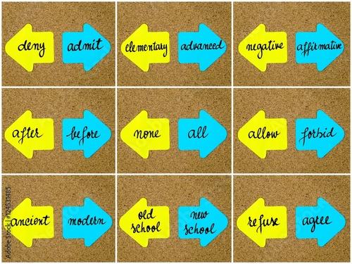 Antonym concepts written on opposite arrows Wallpaper Mural