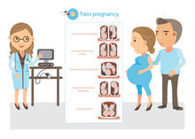 Twin Pregnancy Doctor Explained Twin Pregnancy. Cartoon Vector Illustration.