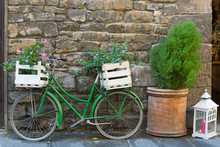 Old Styled Bicycle In Green With Box Of Mandevilla Flowering Plant Parking Outside Building On Street, Italy