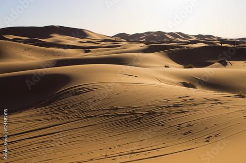 Fototapeten Durre Sahara desert in Morocco