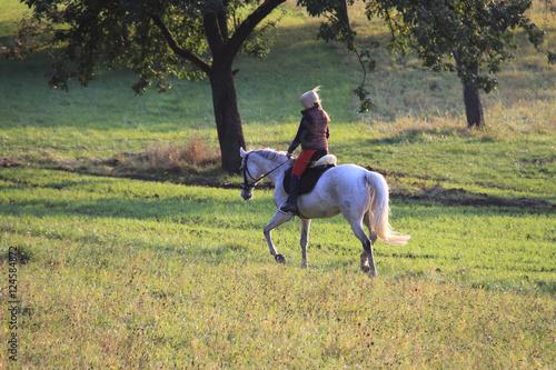 Tuinposter Paardrijden Pferd und Reiterin