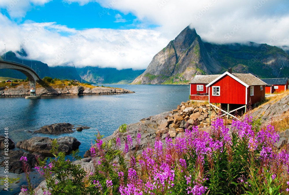 Fototapety, obrazy: Lofoten islands landscape with tipical red houses, Norway