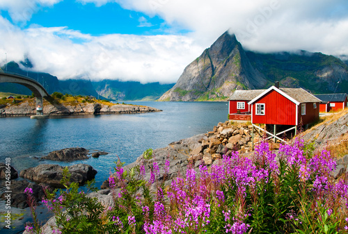 Poster Scandinavia Lofoten islands landscape with tipical red houses, Norway
