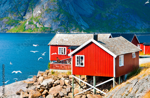 Poster Scandinavië Tipical red houses on Lofoten islands, Norway