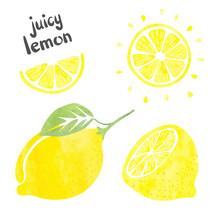 Lemon Set. Vector Watercolor Collection Of Fresh Lemon Fruits.