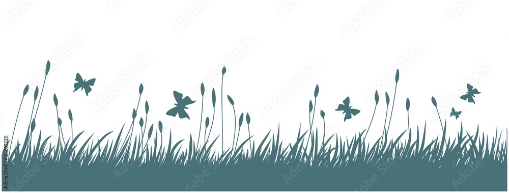 Fototapety, obrazy: Landscape with grass and butterflies.