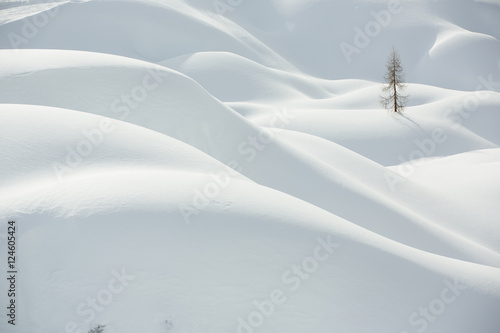 Foto auf Gartenposter Hugel Snow, winter mountain landscape, tree alone