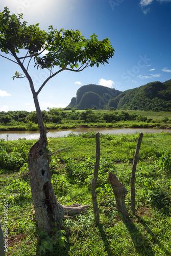 hummocks in valley of Vinales,Cuba Slika na platnu