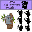 Educational game: Find the correct shadow. Little cute baby koal
