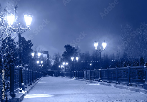 Winter park in the night time, bridge covered by snow with lamps. Toned.