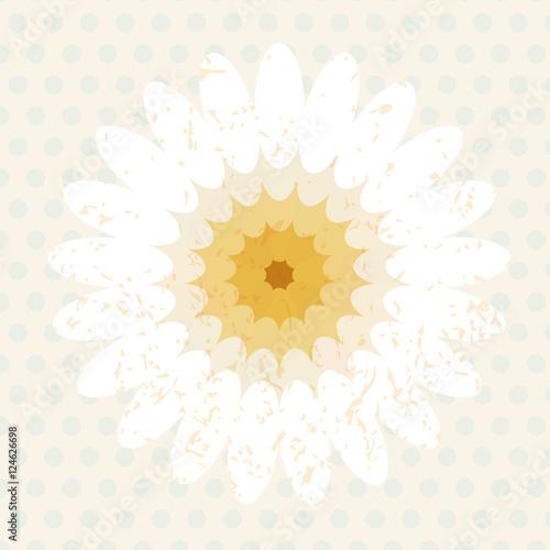 Vector elliptical element of the center affine geometry flower Wallpaper Mural