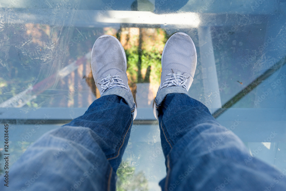 Fototapety, obrazy: The Canopy Walkway a floor can look through elevated from ground