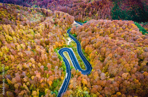 Winding road trough the forest. Hi mountain pass in Transylvania