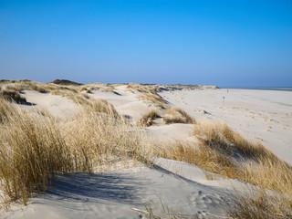 Strand, Dünen mit Dünengras und blauer Himmel