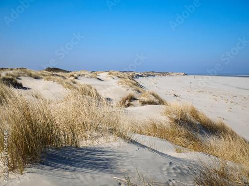 Autocollant pour porte La Mer du Nord Strand, Dünen mit Dünengras und blauer Himmel