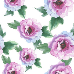 FototapetaWildflower peony flower pattern in a watercolor style isolated. Aquarelle wild flower for background, texture, wrapper pattern, frame or border.