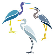 Stylized Birds - Herons
