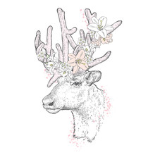 Beautiful Deer In A Flower Wreath. Vector Illustration For A Card Or Poster. Print On Clothes. Fashion & Style. Wild Animal.