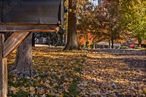 Staande foto Herfst Autumn Leaves Scene