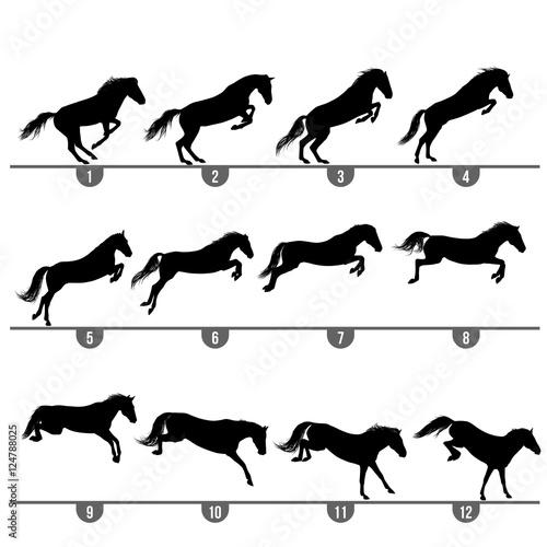 Obraz na płótnie Set of 12 jumping horse phases silhouettes