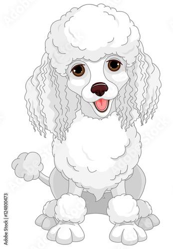 Printed kitchen splashbacks Fairytale World Poodle